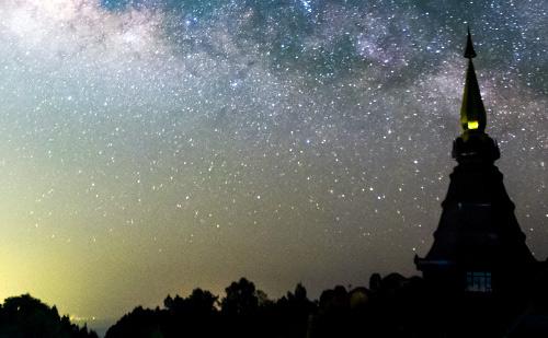 ジーニー先生の良く当たる星占い【7月20日~7月26日】