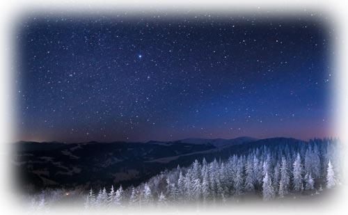 ジーニー先生の良く当たる星占い【11月28日~12月4日】