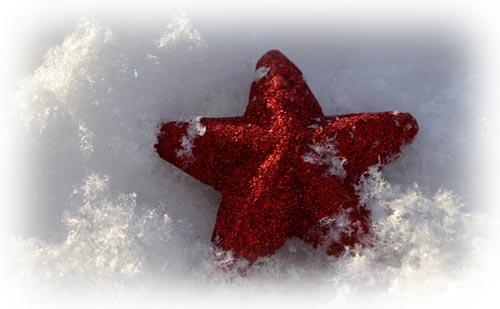 ジーニー先生の良く当たる星占い【7月24日~7月30日】