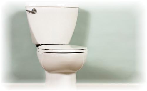 Dr.コパの開運縁起~鬼門のトイレはゆめゆめ掃除を怠るな~