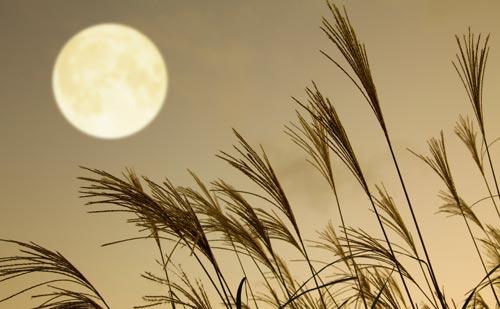 満月で読む天空模様【2015年12月】